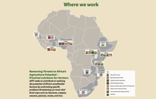 "The African Agricultural Technology Foundation: ""Where we work"""